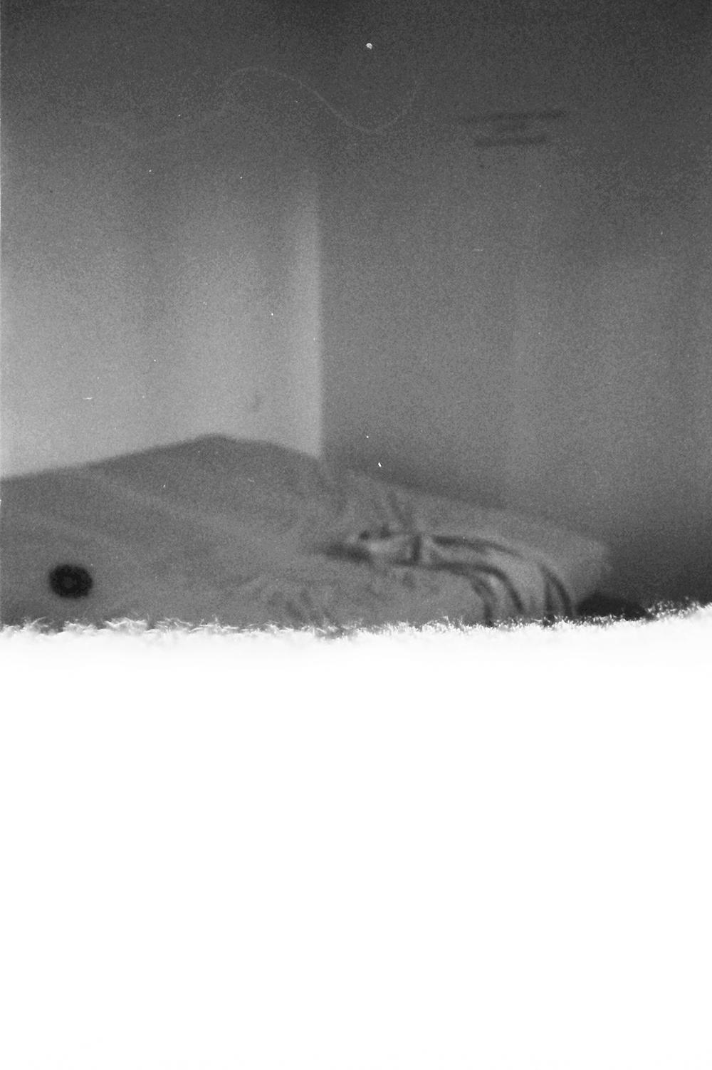 la plume plongea la tete#07.jpg