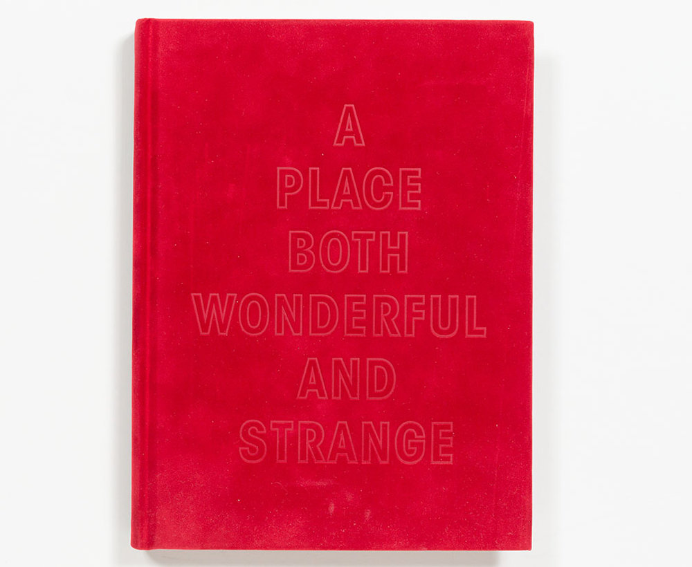 a_place_both_wonderful_and_strange_cover.jpg