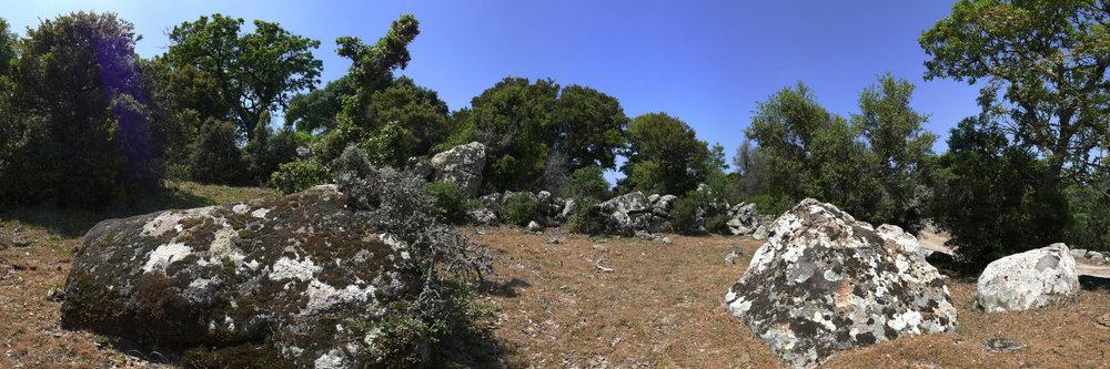 mossbewachsene Steine im Gebirge von Lesbos