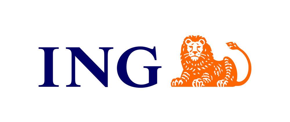 Logo INGwebsite.JPG