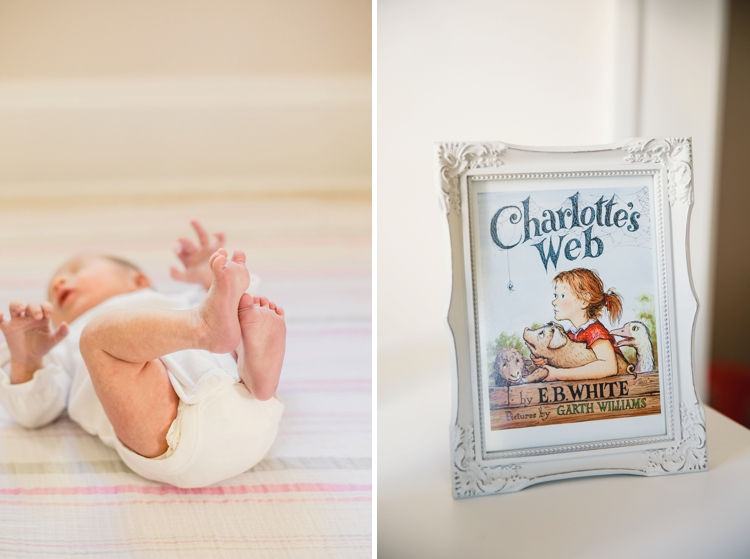 Shaker Heights In-Home Newborn Session