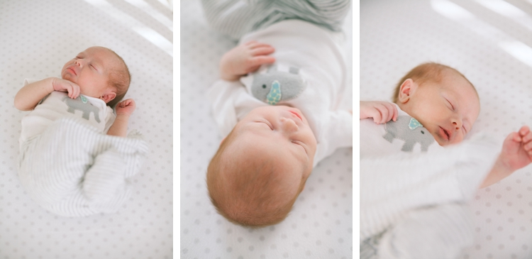 On-Location Hudson Newborn Photographer