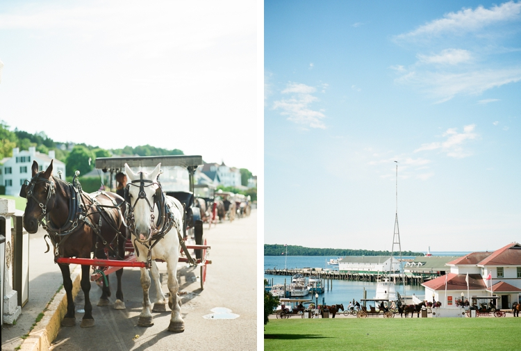 Horses on Mackinac Island Michigan