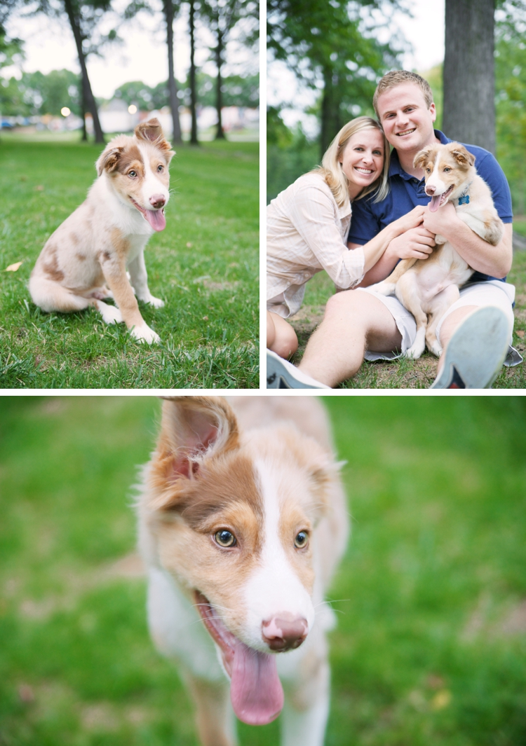 Cleveland Pet Photographer