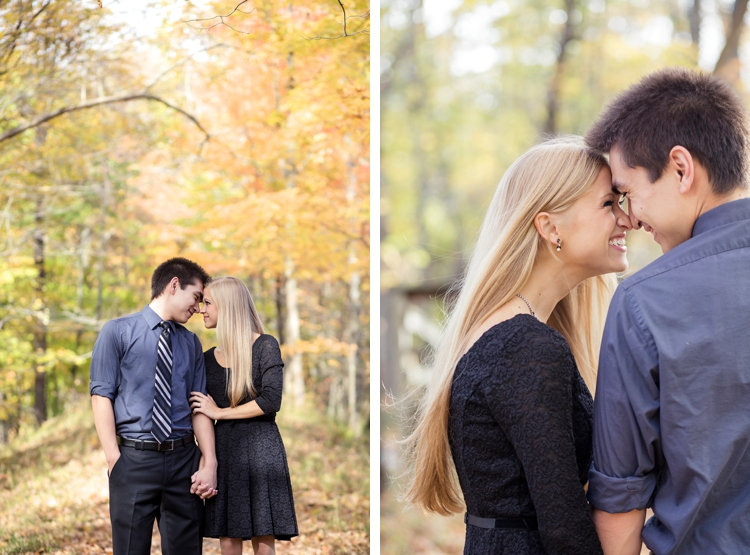 Chagrin Falls Ohio Engagement