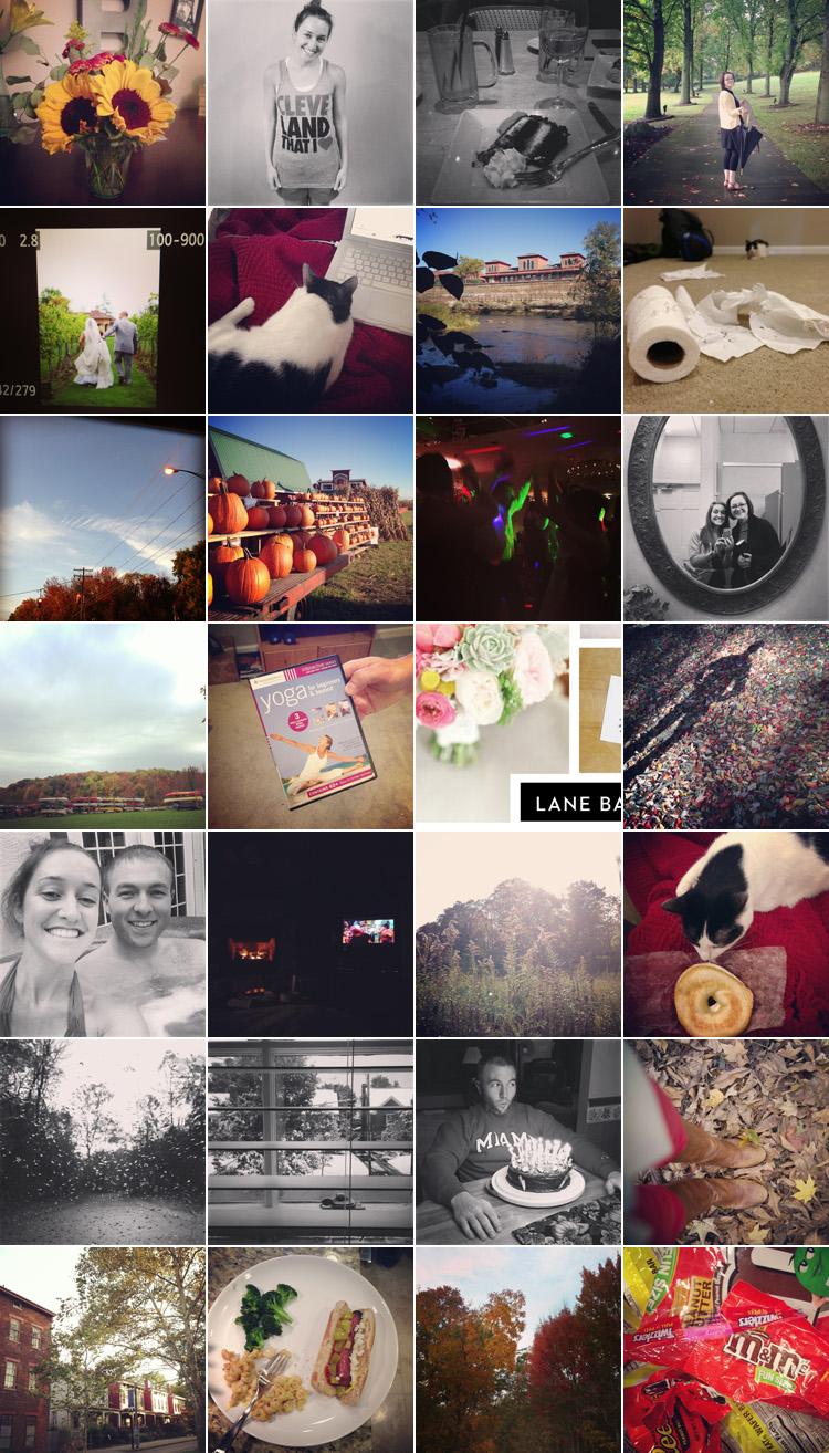 365 Day Photo Challenge