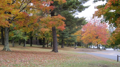 Fall at the Adirondack League Club