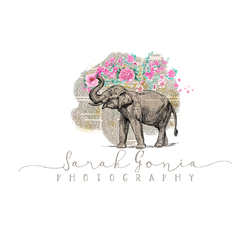 Sarah Gonia Photography Logo designed with and created by Wild Hyacinth Design Studio.
