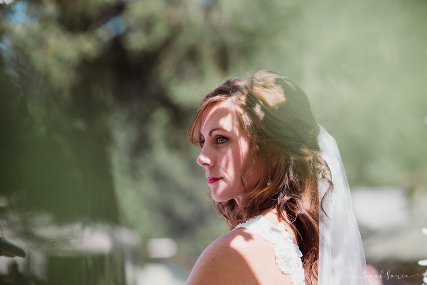 Olympia Wedding Photographer Colombus Park