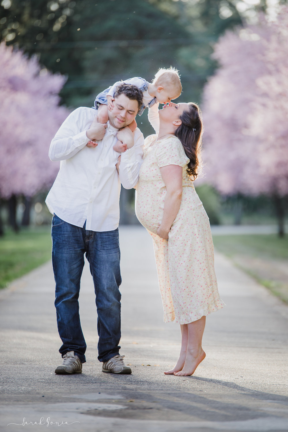 Cherry Blossom Family Portrait | Lacey Maternity Photographer