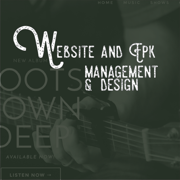 have a website designed for your needs in your style. OUr creative graphic and web designers will tailor a fully functional website that showcases your media and music in a stylish and creative design.