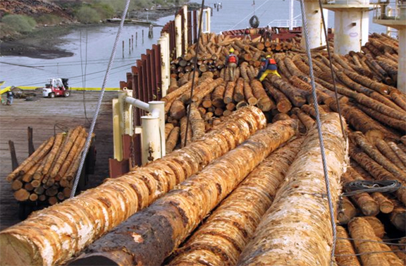 Maritime Commerce Port Of Coos Bay Oregon S Seaport