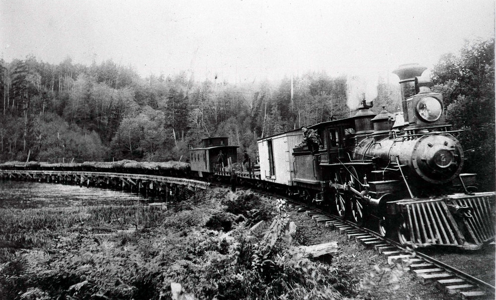 CBRE 1893 at Davis Slough.jpg