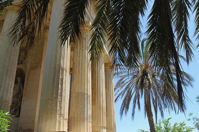 Barrakka Gardens. . . . . #BarrakkaGardens #PalmTrees #Terrace #Valletta #Malta #ExploreEurope #Photography#Canon700d #MalteseHistory #MalteseArchitecture #Nature