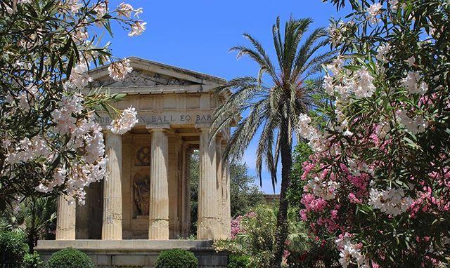 Barrakka Gardens. . . . . #BarrakkaGardens #PalmTrees #Blossom #Valletta #Malta #ExploreEurope #Photography#Canon700d #MalteseHistory #MalteseArchitecture #Nature #UrbanEnvironment