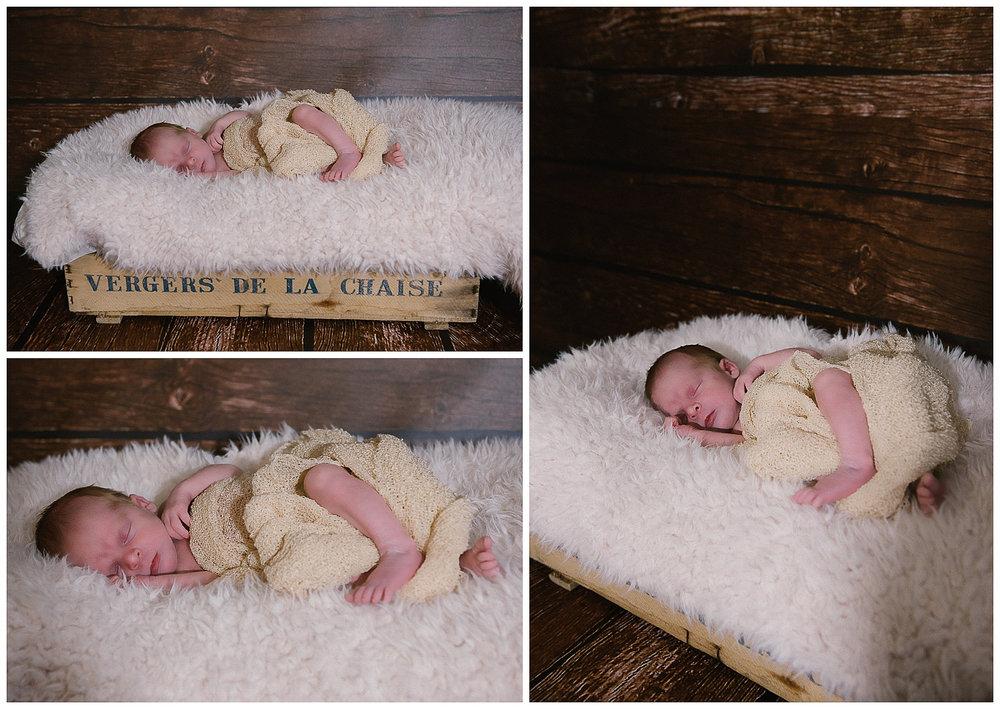 Newborn Photography-23.JPG