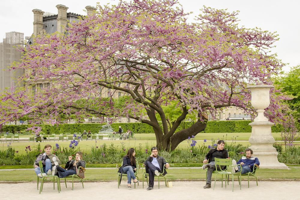 Jardin des Tuileries - Photography : Alexander J.E. Bradley - Nikon D7000 -Nikkor 24-70mm f/2.8 @ 35mm - F/4 - 1/60 - ISO:100