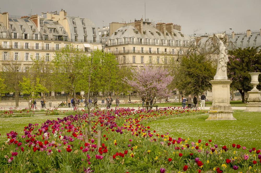 Jardin des Tuileries - Photography : Alexander J.E. Bradley - Nikon D7000 -Nikkor 24-70mm f/2.8 @ 60mm - F/8 - 1/160 - ISO:100