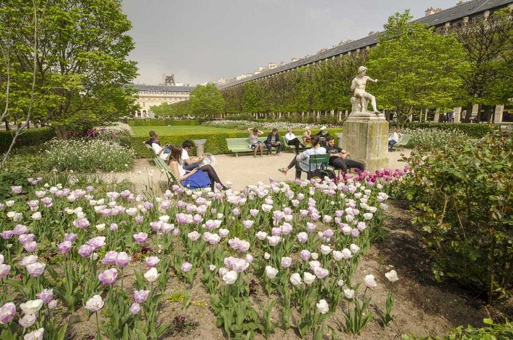 Jardin du Palais Royal - Photography : Alexander J.E. Bradley - Nikon D7000 -Nikkor 14-24mm f/2.8 @ 14mm - F/11 - 1/125 - ISO:100