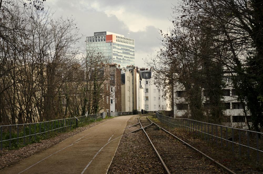 Promenade de la petite ceinture  - PHOTOGRAPHY : ALEXANDER J.E. BRADLEY - NIKON D7000 - NIKKOR 24-70MM F/2.8 @ 55mm - F/6.3 - 1/160 - ISO:100