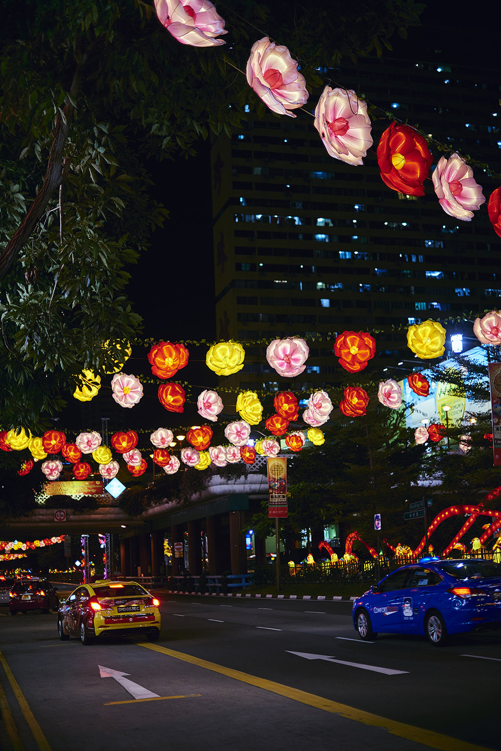 Street Light Up - PHOTOGRAPHY :  LIKHITHA (ANYA) MURALIKRISHNA  - NIKON D810  - NIKKOR 50  MM F/1  .4  @  F/1.4 - 1/125   - ISO 250