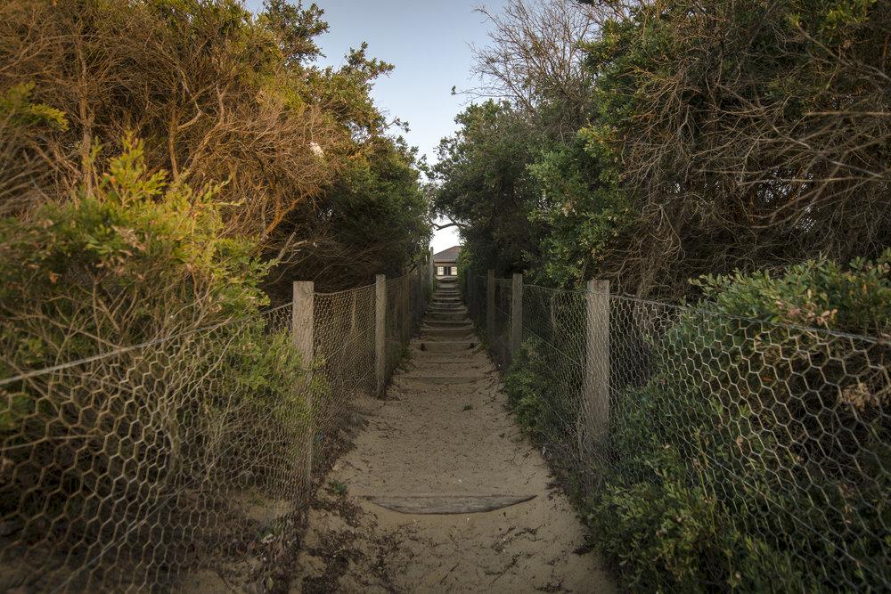 THe Path to the Dendy Street Beach PHOTOGRAPHY : ALEXANDER J.E. BRADLEY - NIKON D7000 - 14-24 F/2.8 @ 14MM - F/2.8 - 1/100 - ISO 100