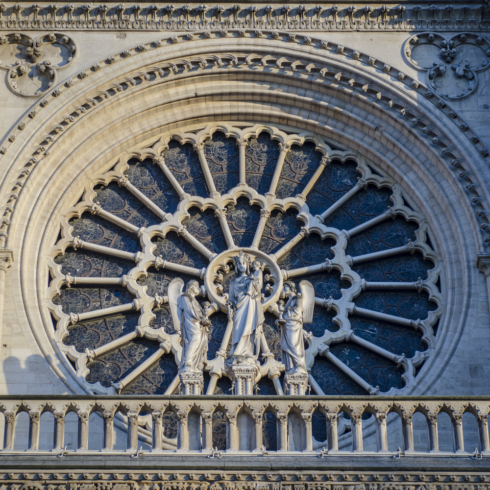 Parvis Notre Dame - Place Jean-Paul II  PHOTOGRAPHY : ALEXANDER J.E. BRADLEY •Nikon D7000 • AF-S NIKKOR 24-70mm F/2.8G ED • 62mM • F/3.5 • 1/250 •ISO 100