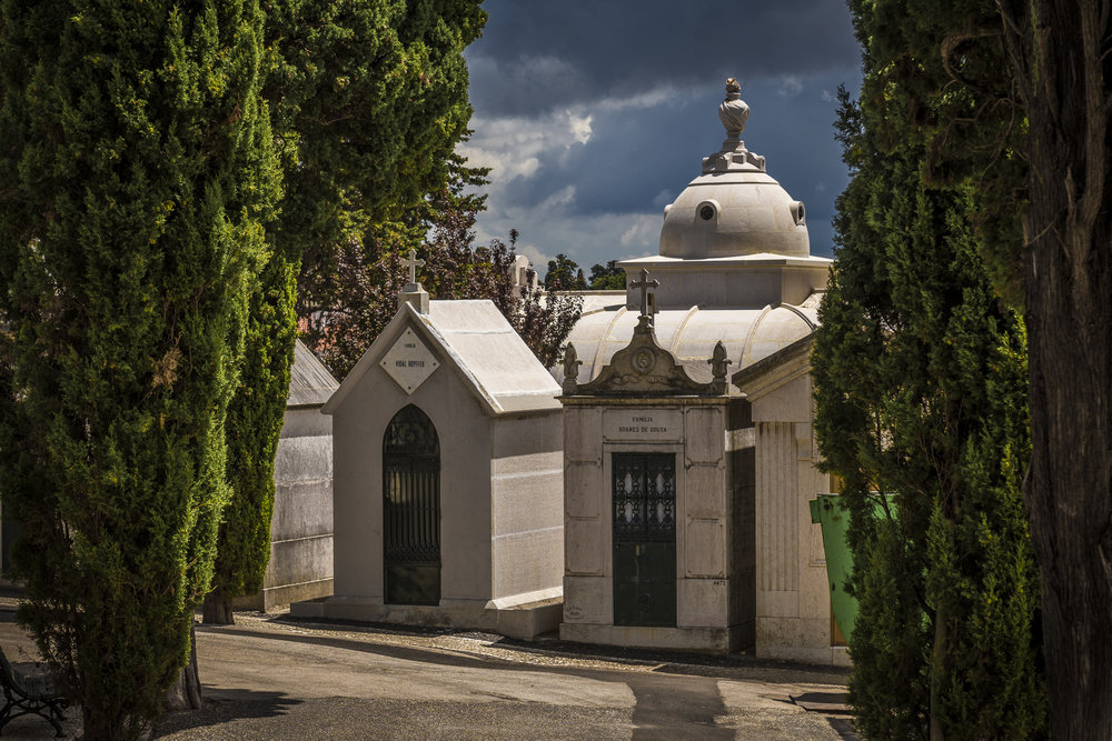 Prazeres Cemetery  PHOTOGRAPHY: ALEXANDER J.E. BRADLEY •NIKON D500 • AF-S NIKKOR 24-70mm f/2.8G ED • 70mm • F/8 •1/800 •ISO 100