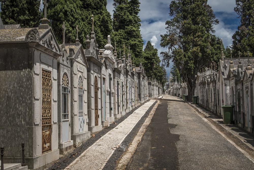Prazeres Cemetery  PHOTOGRAPHY: ALEXANDER J.E. BRADLEY •NIKON D500 • AF-S NIKKOR 24-70mm f/2.8G ED • 35mm • F/8 •1/800 •ISO 100