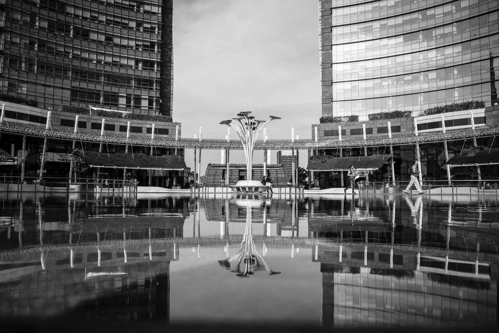PHOTOGRAPHY: Mirko Fin • Fujifilm X-T2 • XF18-55mm Ƒ/2.8-4 R LM OIS @ 18.8mm • Ƒ/4.5 • 1/500 • ISO 100