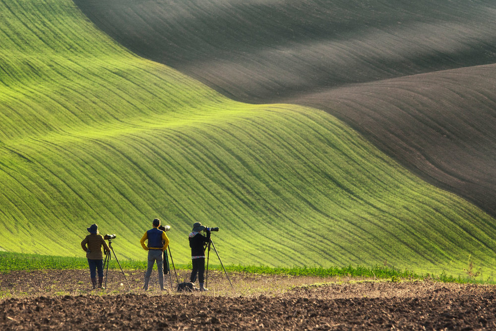 south moravia  Photography: Martin Bisof