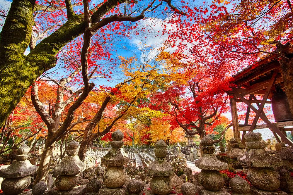 Kyoto temple.jpg