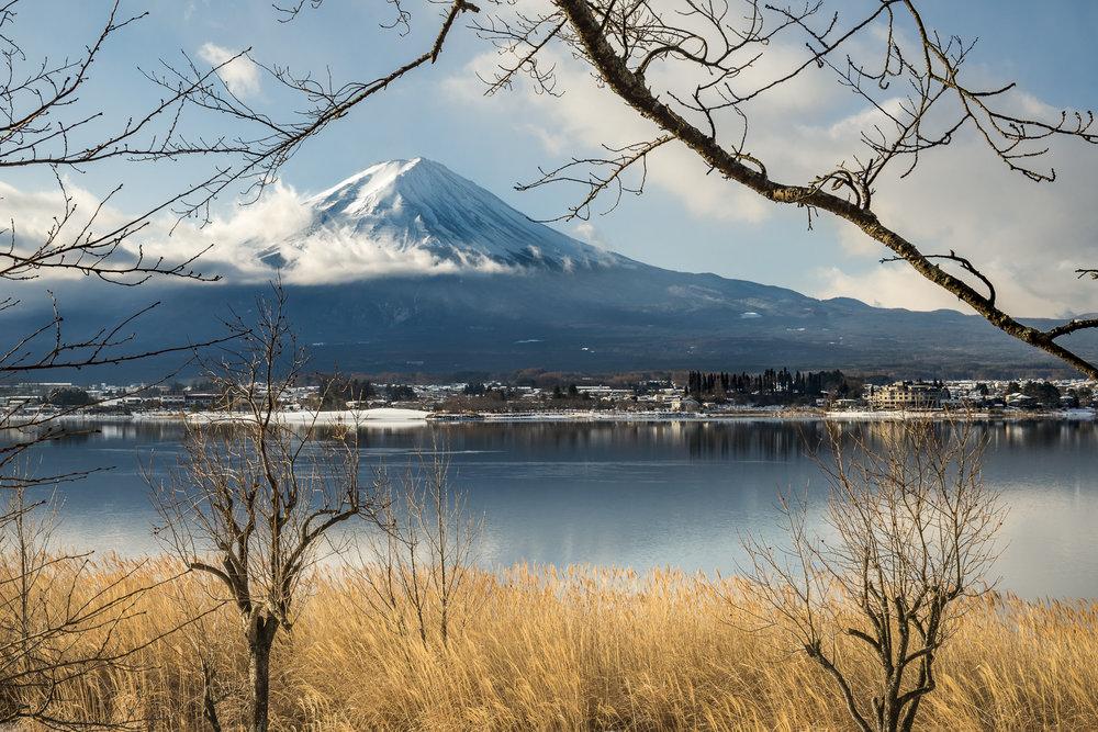 Mt Fuji Five Lakes