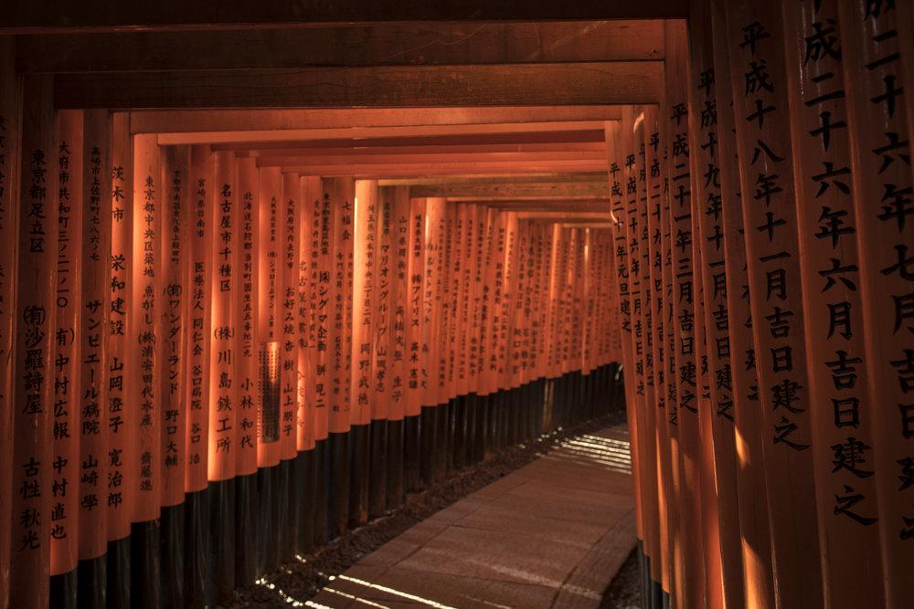 Fushimi Inari Shrinea  PHOTOGRAPHY: ALEXANDER J.E. BRADLEY • NIKON D500 • AF-S NIKKOR 24-70mm f/2.8G ED @ 24MM • Ƒ/2.8 • 1/125• ISO 200