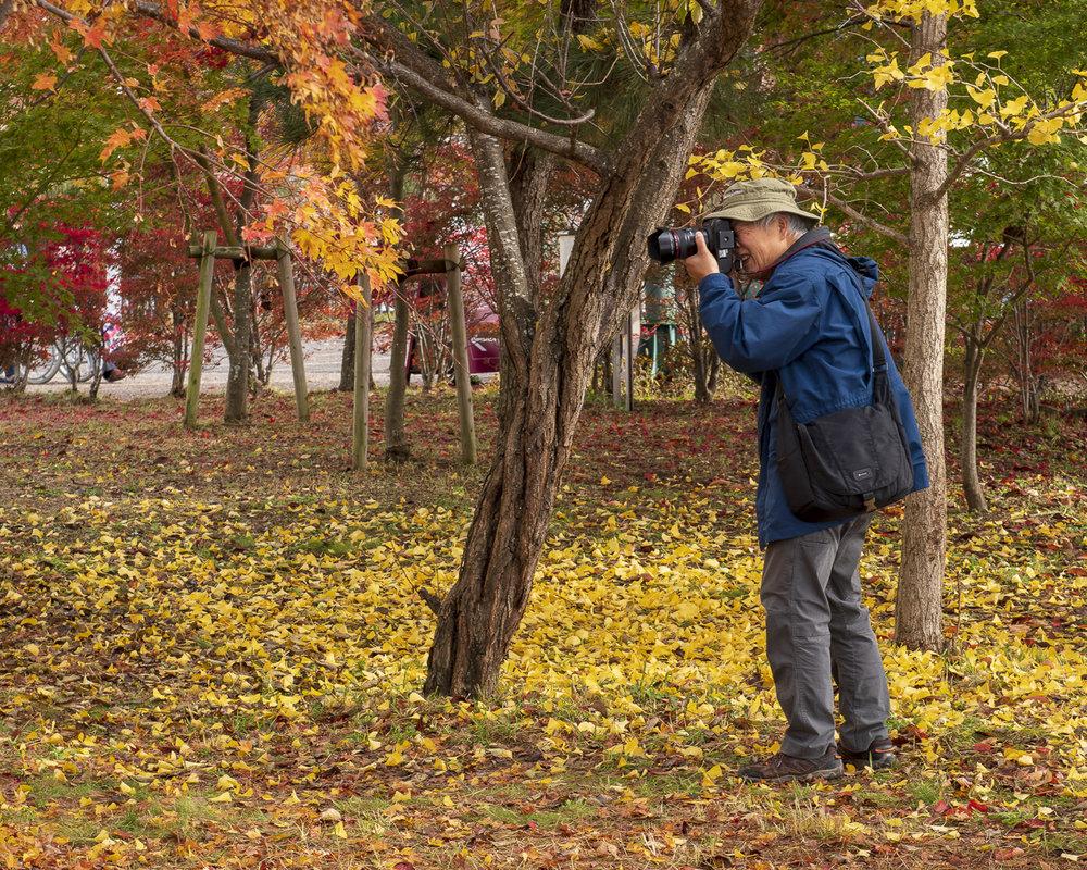 japan-autumn-036-aperture-tours.jpg
