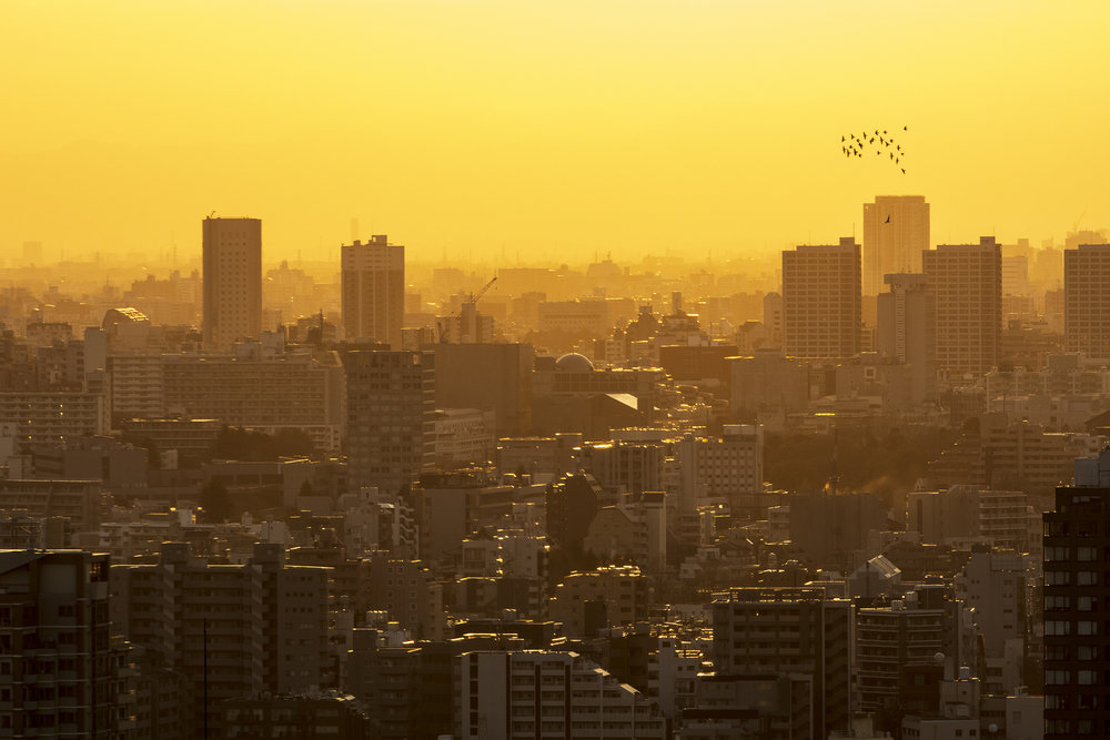 aperture-tours-tokyo-016.jpg