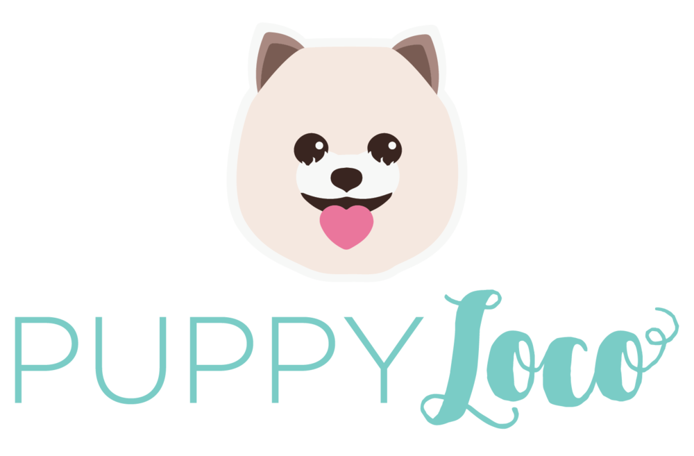 branding & logo created for PuppyLoco