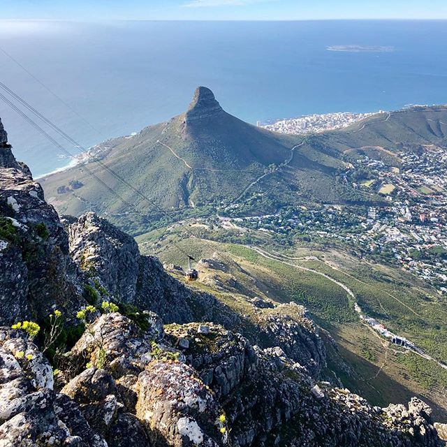 View of Lion's Head from Table Mountain. Check out @secretcapetown for awesome local tips! Cape Town video linked in bio ✌️ . . . . . . . #capetown #lionshead #sunrise #travel #tablemountain #tablemountainview #capetownadventure #explore #adventure #youtube #capetownsouthafrica #southafricatravel #capetownlife #wanderlust #secretcapetown #tablemountain #tablemountainsunrise #tablemountainview @youtube #natgeo #natgeoyourshot #photography #travelphotography #travelblogger #vlog #vlogging #travelvlogger #travelvideo #youtubers #travelling watch https://youtu.be/Icf7oJGLAQM now