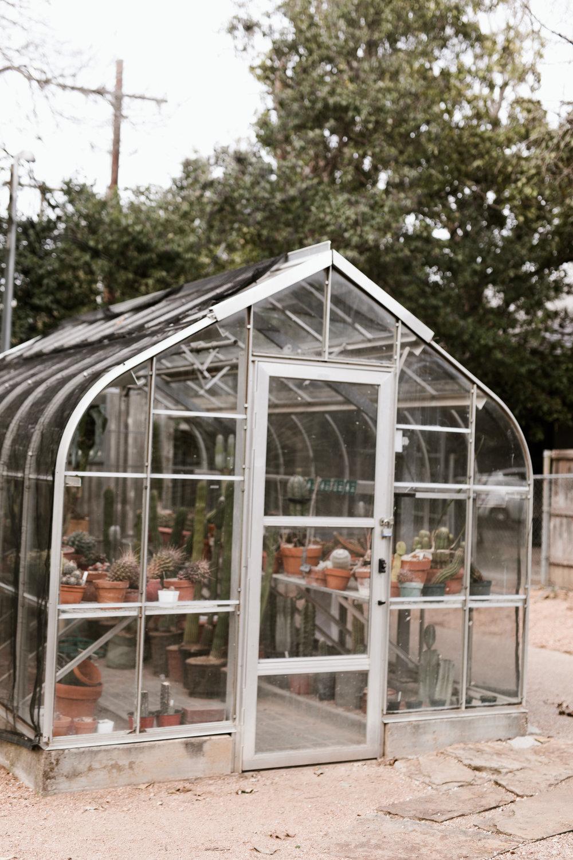greenhouse-8.jpg