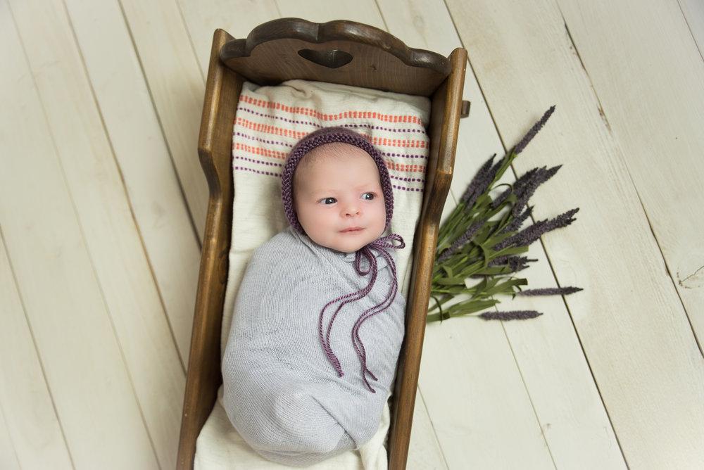 newborn girl with lavender