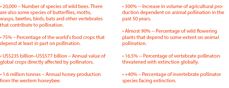 Source: IPBES, Pollinators Vital to Our Food Supply Under Threat, 2016