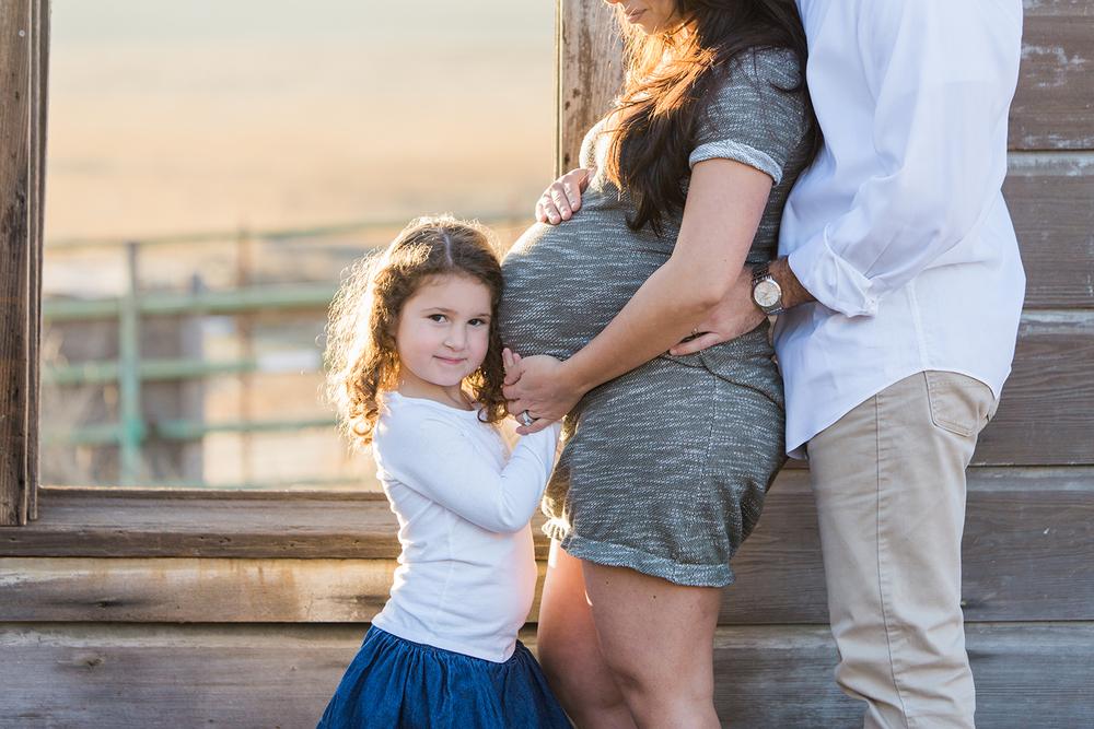 Dena_Rooney_Maternity_Portraits_001.jpg