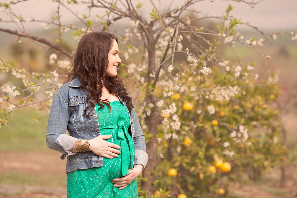 Dena_Rooney_Maternity_Portraits_055.jpg
