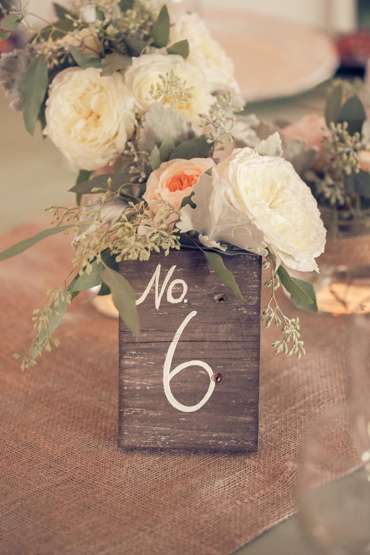 Dena_Rooney_Wedding_Photographer_Rios_Lovell_023.jpg