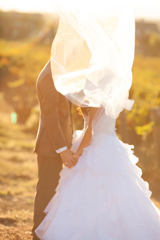 Dena_Rooney_Wedding_Photographer_Rios_Lovell_030.jpg