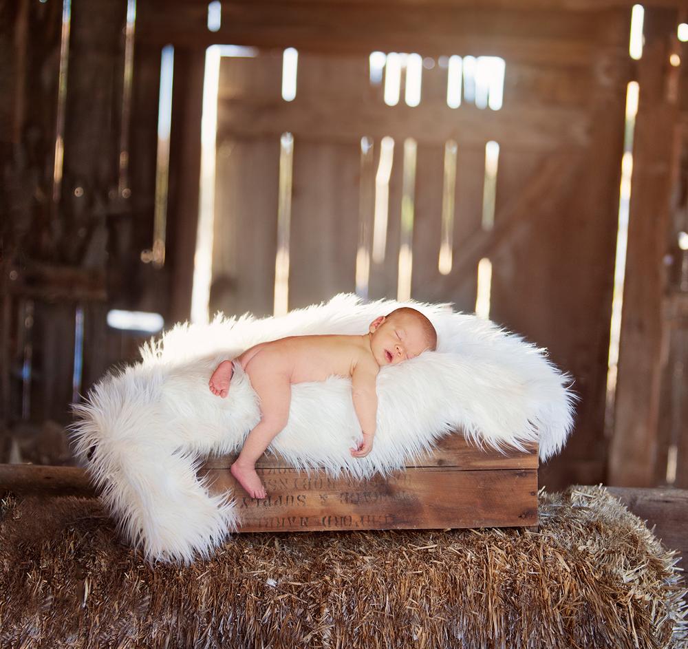 Dena_Rooney_newborn_photographer_0056.jpg