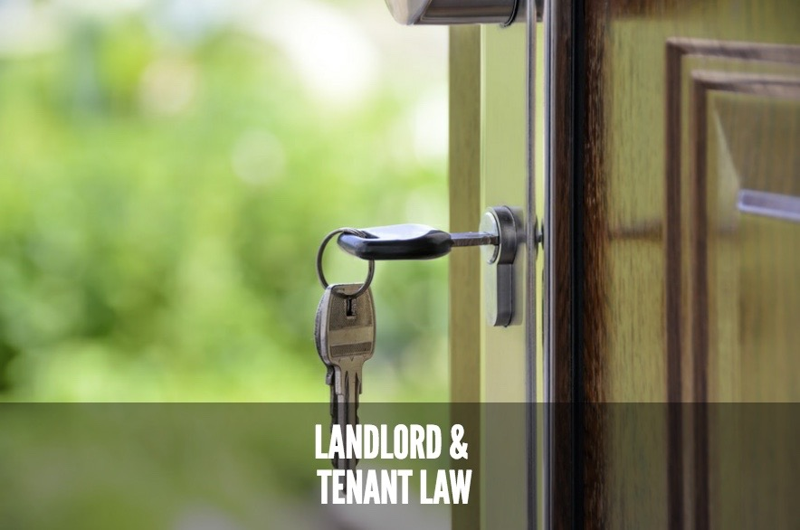 Landlord and tenant law service