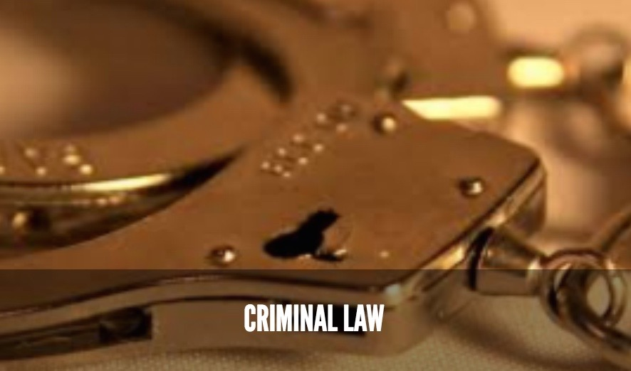 Criminal Law services