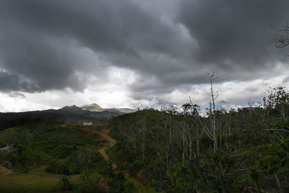 house sits on a hilltop along the damaged road to Jayuya. The bent and twisted trees are a sign of the sustained maximum wind speeds from Hurricane Maria, the strongest hurricane to hit Puerto Rico since 1928.