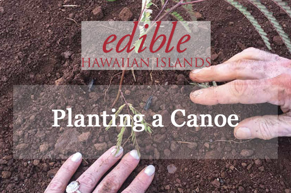 Planting a canoe